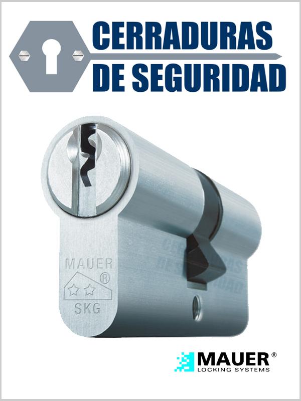 Motivos para reforzar la seguridad de las propiedades con bombines antibumping