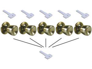 Diferencias entre amaestrar e igualar llaves